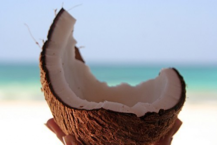 How to open a coconut // Desert island skillz