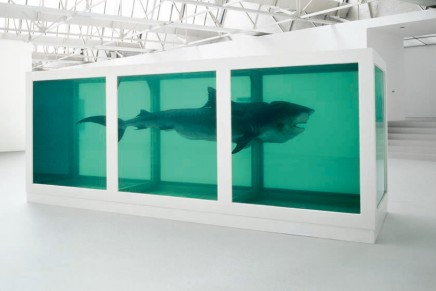 Seven reasons why we love Damien Hirst // Sharks in formaldehyde and that