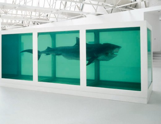 Damien Hirst shark in a tank