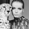 Veruschka 1967 wild animals shoot