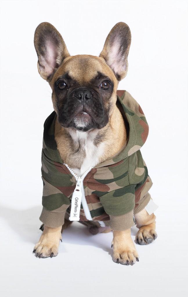 dog onesie - leblow.co.uk