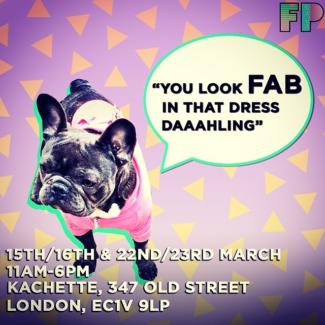 asos marketplace fox problem noah the pug
