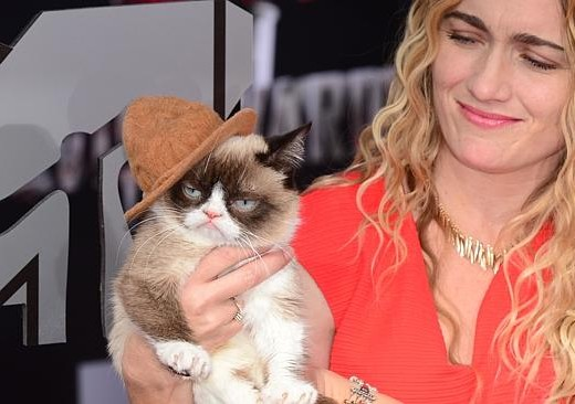 Grumpy Cat MTV Awards 2014