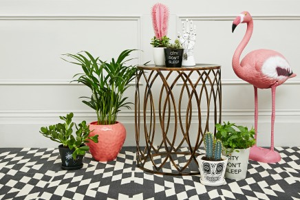 Urban Outfitters: Grow // Horticulture never looked so haute