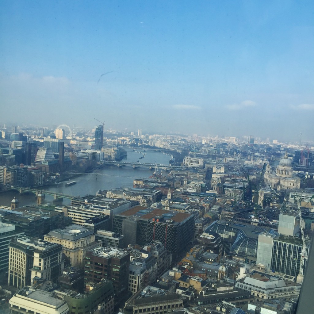Sky garden London view